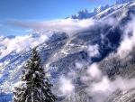 Winter in the mountain