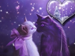 Cats N Love