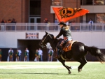 Oklahoma State Cowgirl