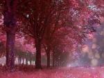 ★Twinkling Trees★