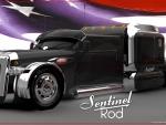 Sentinel Rod