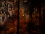 Wolves in Fall Forest