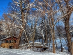 River Bridge in Winter