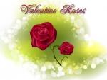 Valentine Roses f