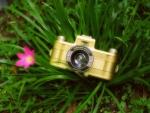 Camera and Hazy Flower