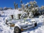 Snowcart in Desert Snow