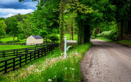 Country Road in Spring - roads, fences, landscapes, nature, spring