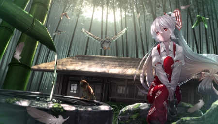 Bamboo Forest - pretty, dress, house, hd, cg, erious, home, beautiful, bamboo, sweet, nice, green, emotional, anime, touhou, beauty, anime girl, long hair, owl, forest, female, lovely, building, water, fujiwara no mokou, girl, bird, silver hair, scene