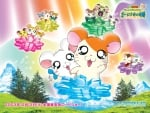 Hamtaro the Movie
