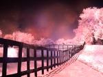Landscape Dreamy