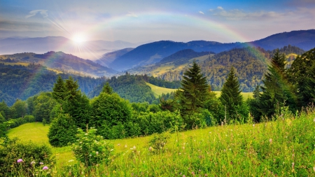 Rainbow Over the Mountains - forest, rainbow, mountains, landscape