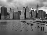 downtown nyc in greyscale