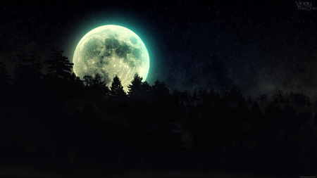 Full Moon Over The Forest - forest, moon, full moon, big moon, over