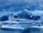 Polar Angel