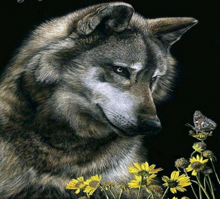 The Wolf and the butterfly - beauty, nature, wolf, butterfly