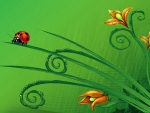 Bright Ladybug on Green