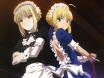 Fate Stay Maid
