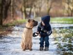 Big Dog and Little Boy