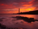 Lighthouse Sunset in Angus, Scotland
