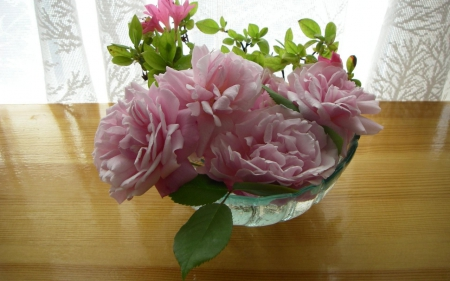 Vase With Roses - flowers, vase, nature, roses, pink