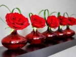 Five Red Roses On Vases