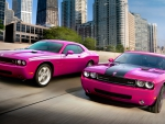 Dodge Challenger RT SRT8 - Furious Fuchsia
