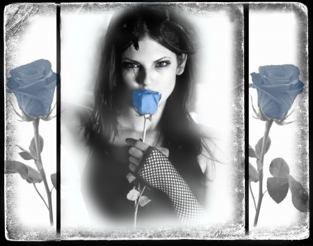 ♡ I love the blue roses ♡
