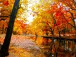 * Autumn river *