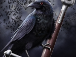 Raven and Sword