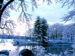 First snowfall on the lake