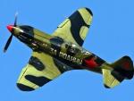 WWII Mikoyan MiG 3