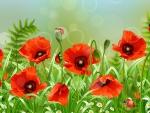 Popular Poppies