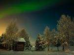 Aurora with beautiful winter