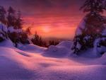 Setting Sun In Winter