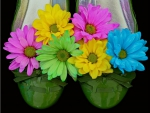 Green Shoe and Flowers