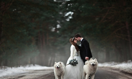 I love what you love - cute, couple, dogs, love