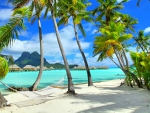 Bora Bora Beach Hammock