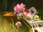 Flowers and Guitar