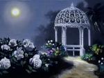 Moonlight White Roses