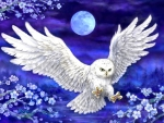 Moonlight White Owl