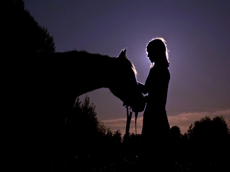End of the day - affection, evening, horse, girl