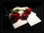 ♥ Love Letter♥