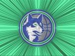 Timberwolves Cracked glass 1st Logo