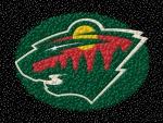 Minnesota Wild 'Marbles' Logo