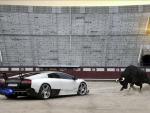Lamborghini vs El Toro!