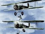 biplanes daredevils