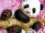 Panda in Spring