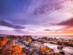 Bay of Sunrise, Tasmania
