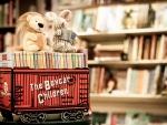 *Vintage childrens books*