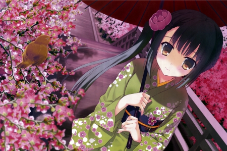 Kimono Chan - pretty, hd, cg, sakura blossom, adorable, cherry blossom, sweet, blossom, nice, japan, anime, yukata, umbrealla, anime girl, long hair, black hair, sakura, female, lovely, japanese, kimono, flora, cute, kawaii, girl, bird, flower, petals, cherry